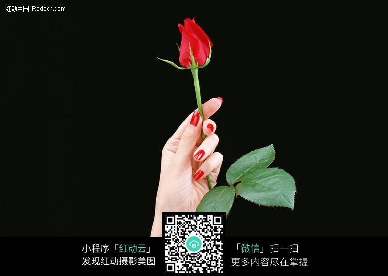 本篇文章《手拿玫瑰花的情侣头像,捧花情侣头像大全》由情侣头像频道