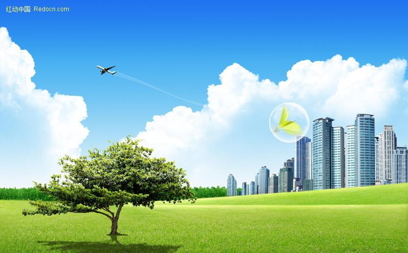 城市风景,广阔草地上的一棵树