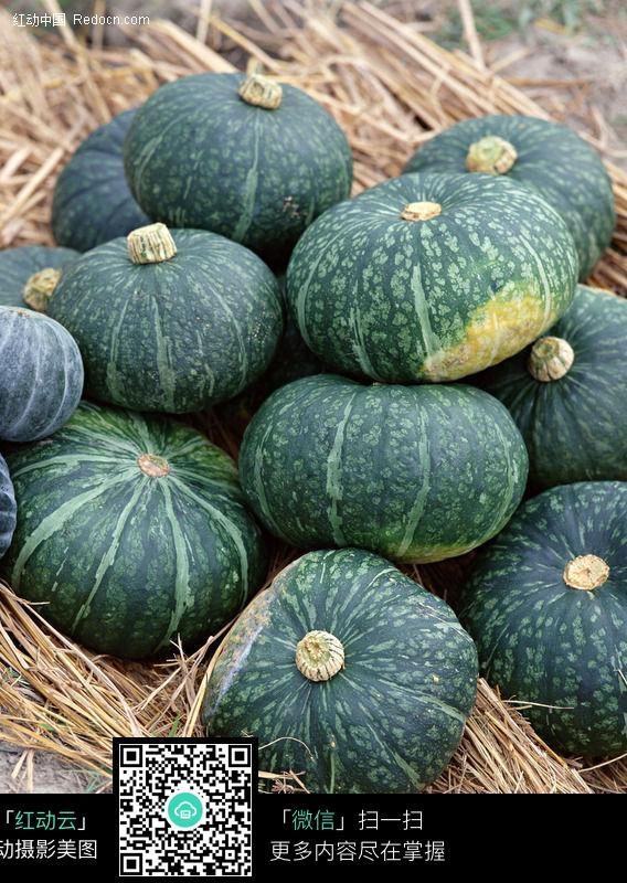 南瓜112图片_水果蔬菜图片