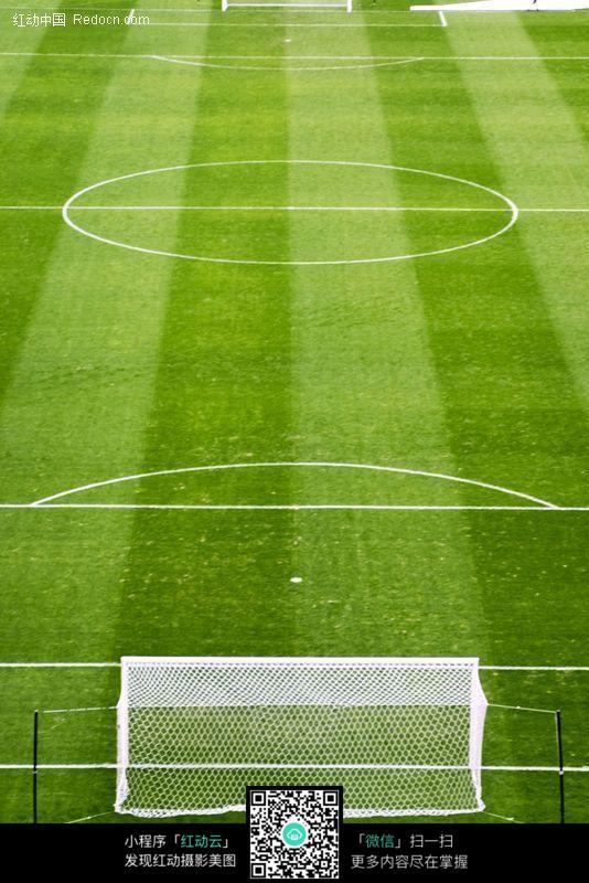 嫩绿的足球场图片