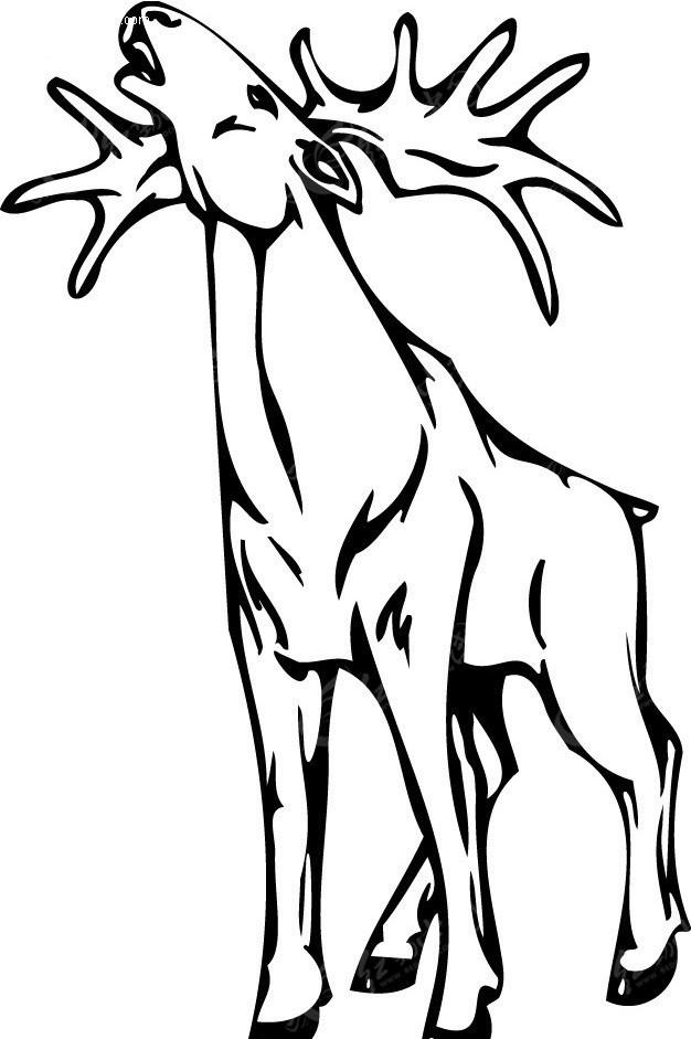 梅花鹿 森林之森梅花鹿梦幻电视 梦幻大树梅花鹿电视背景 转角羚羊角