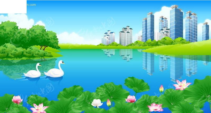 荷塘天鹅图片