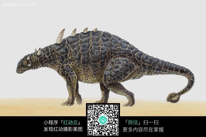 恐龙87图片_动物图片