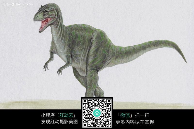 恐龙13图片