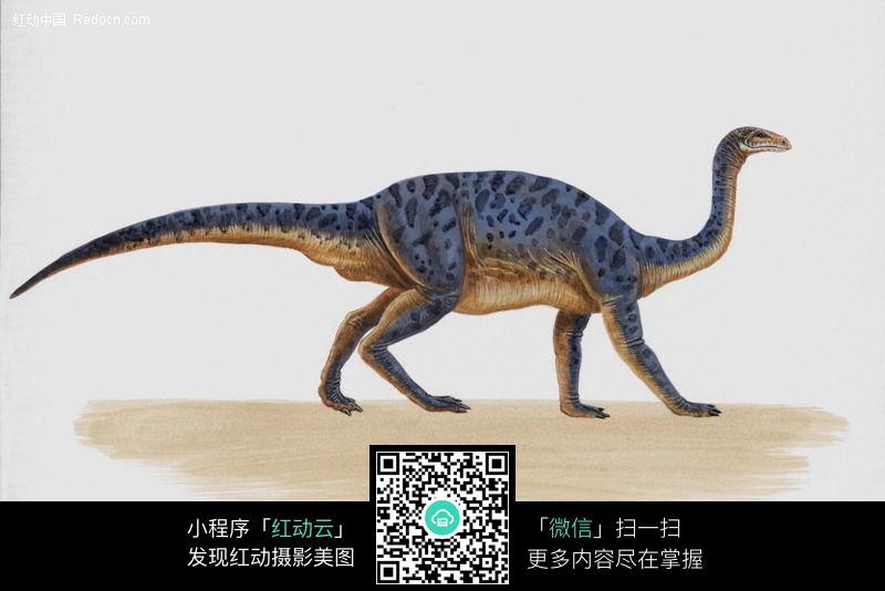 免费素材 图片素材 漫画插画 动物 恐龙73