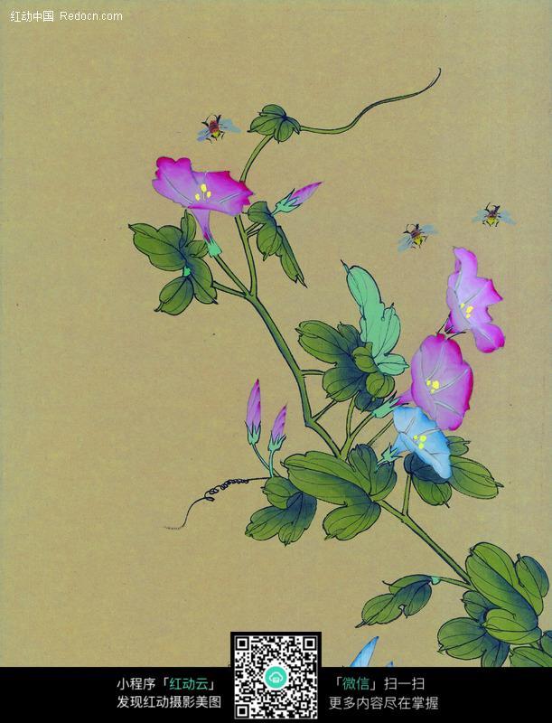 蜜蜂与牵牛花的国画