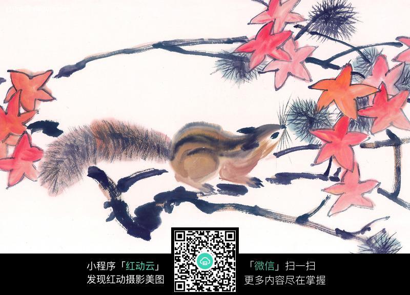 枫叶 红叶 枫树 小松鼠 中国画 水墨画 绘画 书画 摄影图片
