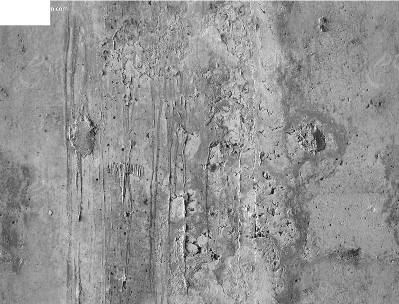 老旧衫树皮材质贴图