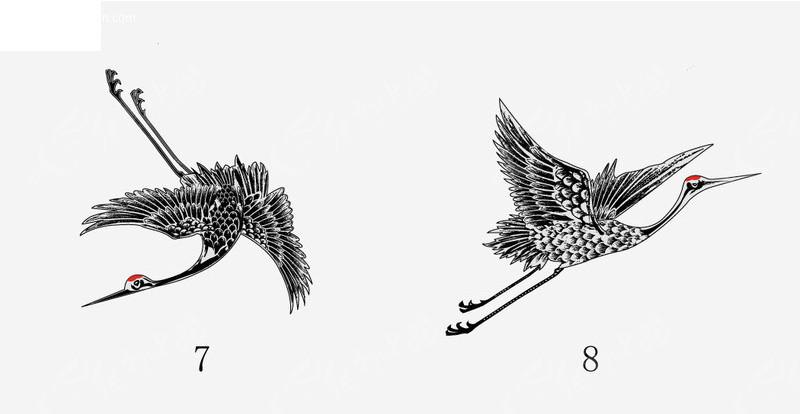 鹤 丹顶鹤 仙鹤  动物 动物图片 矢量素材