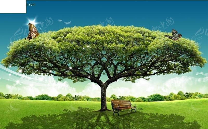 绿色大树草地椅子图片