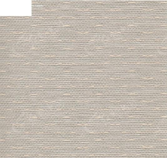 墙纸_材质贴图