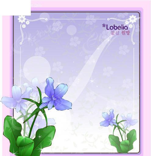 花边边框莲花图片手绘展示