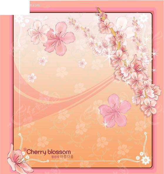 樱花-花边边框