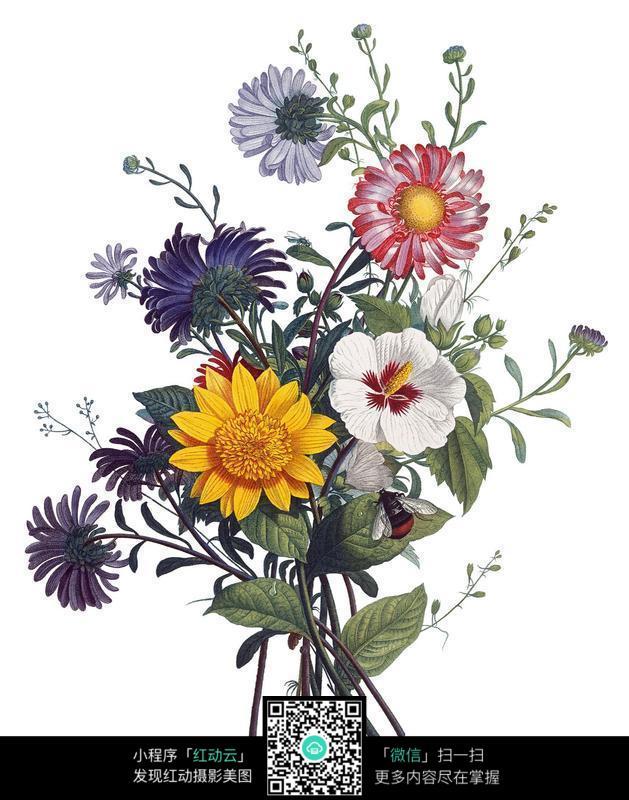 艺术手绘花朵