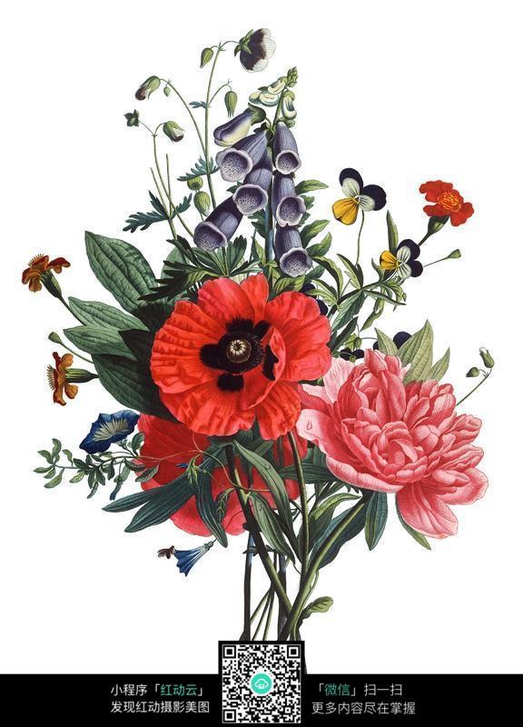 一束漂亮的手绘花朵