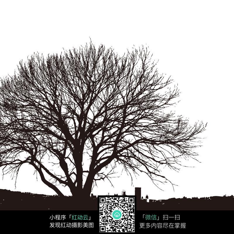 一棵黑白风格的大树图片
