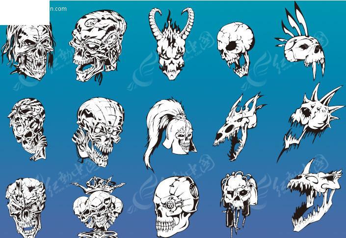各种造型的骷髅