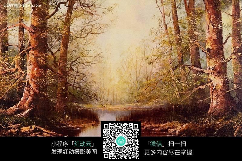 欧式油画 森林图片