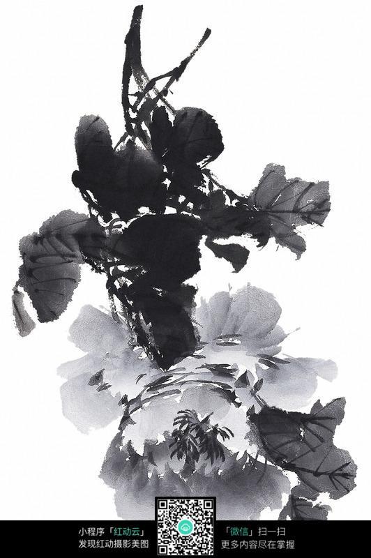 黑白水墨牡丹花图片