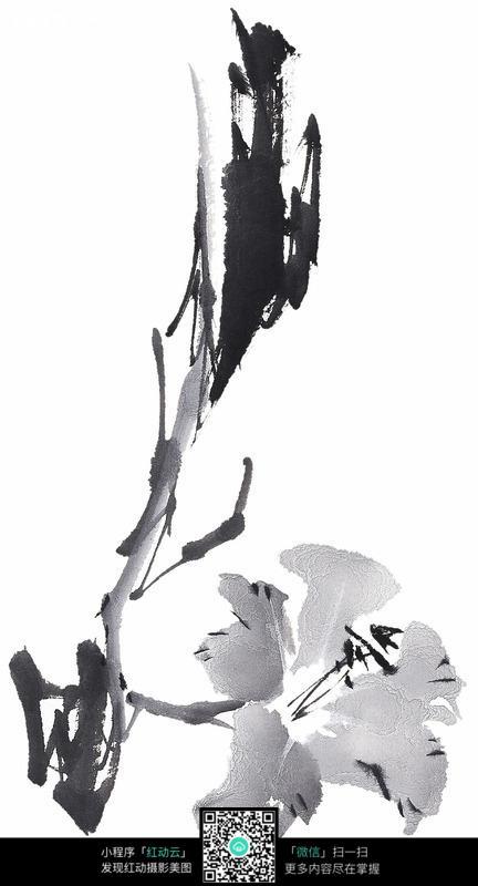 黑白水墨兰花图片
