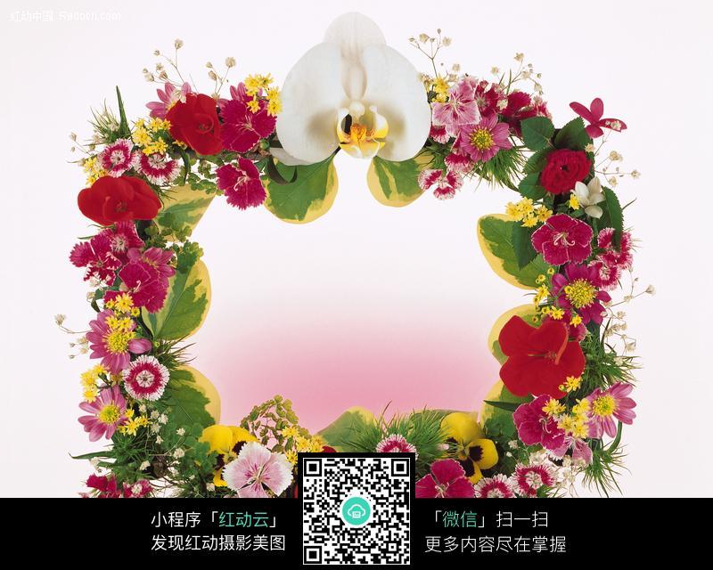 免费素材 图片素材 背景花边 边框相框 植物装饰的花边
