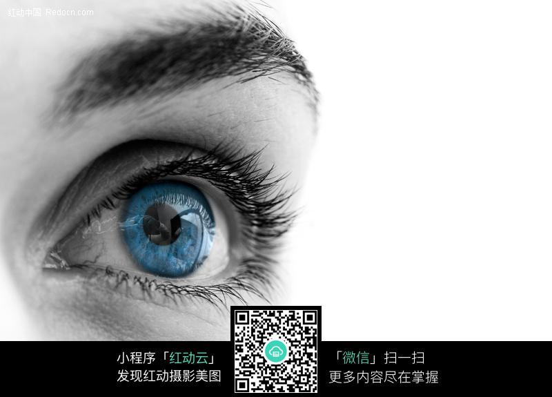 素材下载 图片素材 人物图片 人体器官 > 蓝色的眼睛特写图片