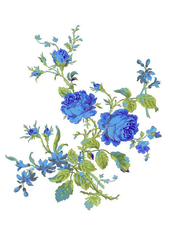 高清手绘花卉分层素材