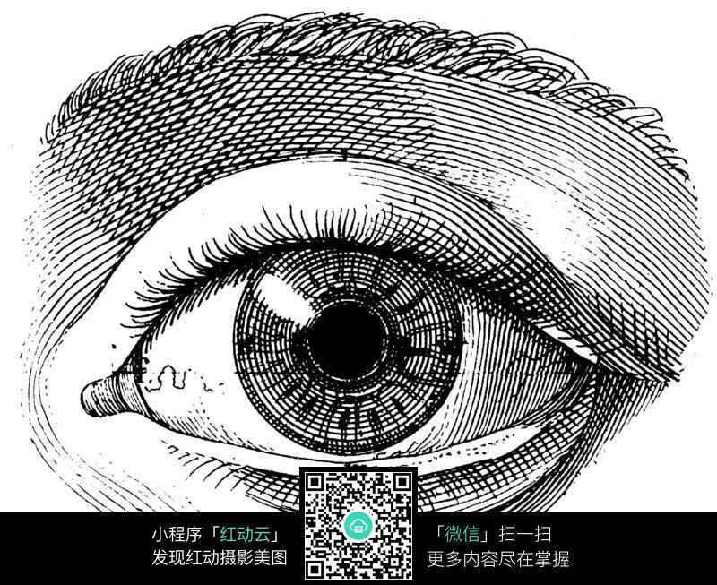 免费素材 图片素材 人物图片 人体器官 眼睛特写