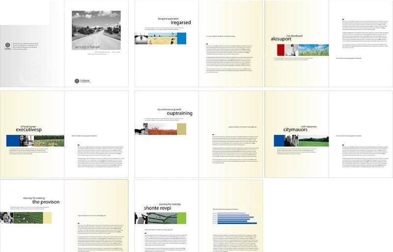 公司画册版式设计模板图片