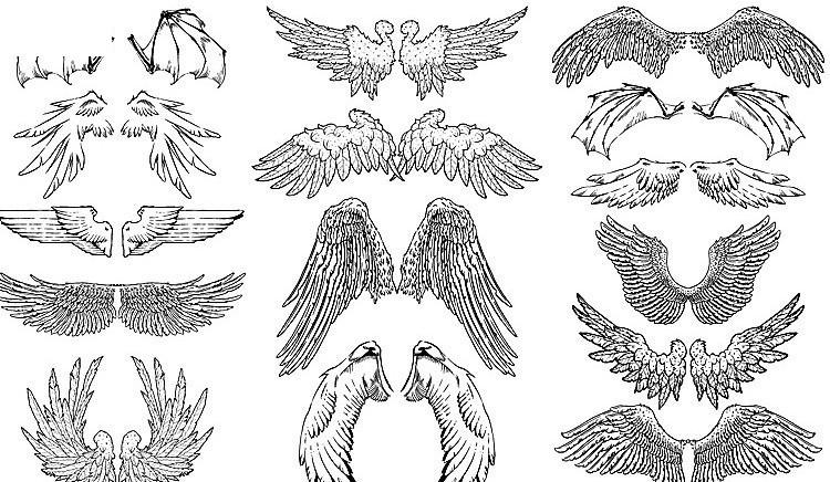 经典翅膀素材 天使的翅膀图片