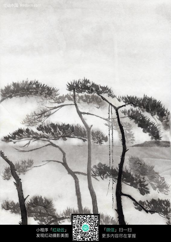 松树水墨画图片