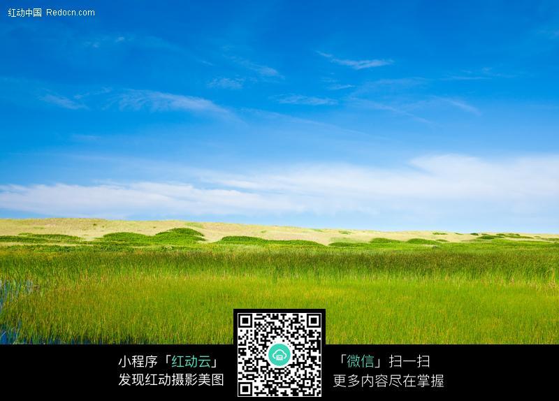 蓝天下的草原图片_自然风景图片