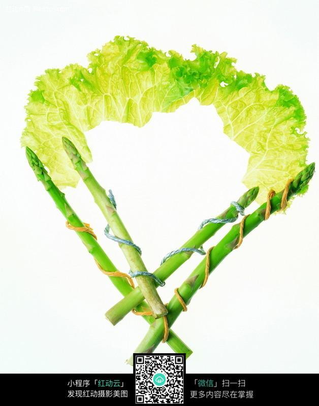 免费素材 图片素材 背景花边 边框相框 蔬菜扇形边框  请您分享: 素材