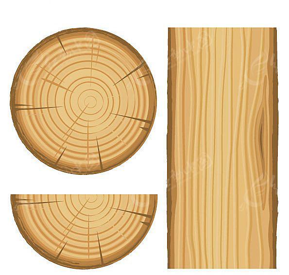 树木年轮矢量图