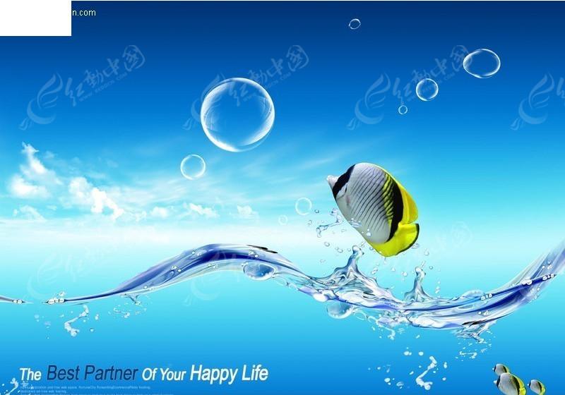 跳出水面的鱼 创意psd图片图片