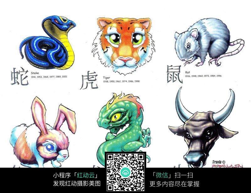 十二生肖彩色手绘纹身图案