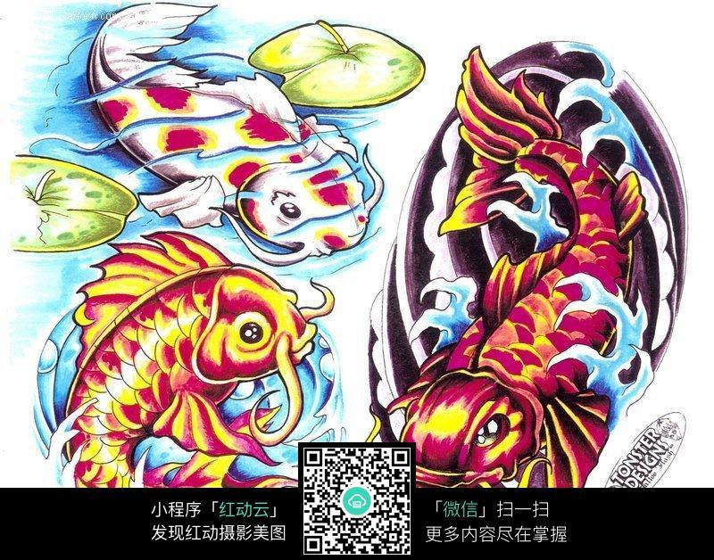 彩色鲤鱼手绘纹身图案
