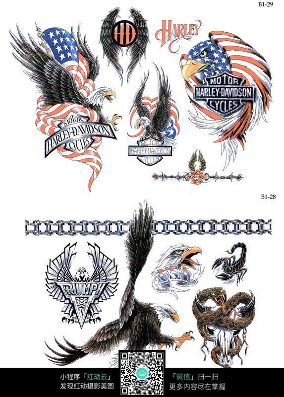 老鹰彩色手绘纹身图案