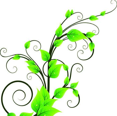 绿色风景照片头像