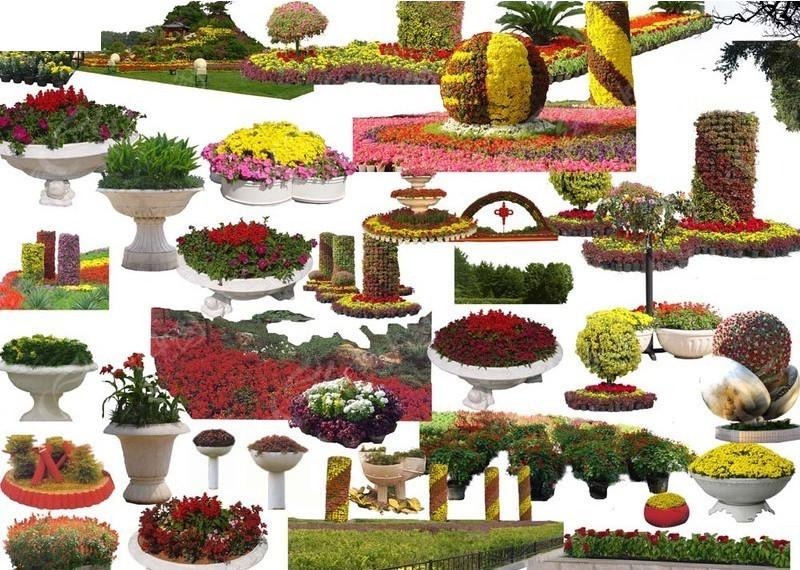 花坛素材_园林景观