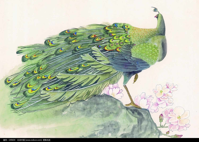 手绘水粉孔雀