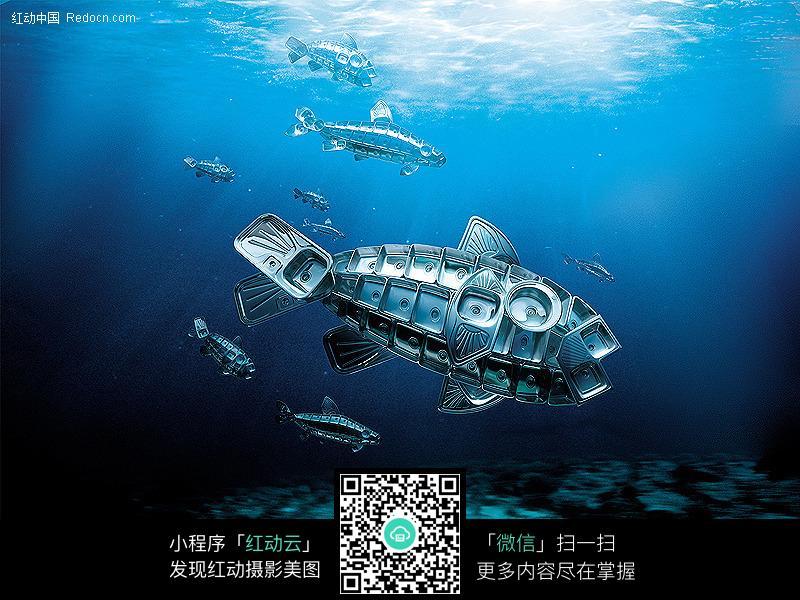 厨具广告创意图片-海鱼