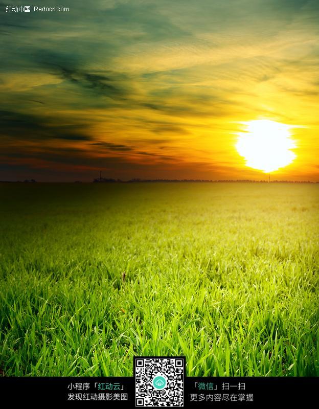 免费素材 图片素材 自然风光 自然风景 草地日落图片