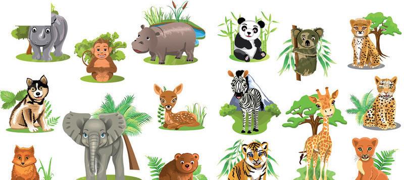 看图中有几种动物