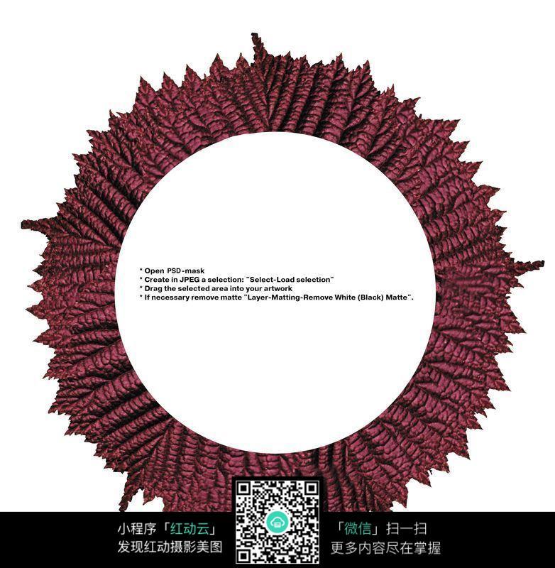 红色树叶组成的圆形外框