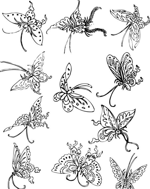 漂亮的矢量蝴蝶线稿