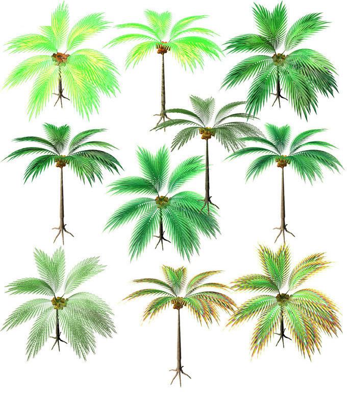 手绘椰子树素材图片