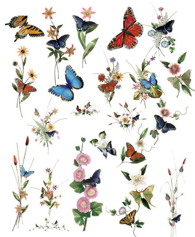 蝴蝶与花素材