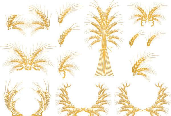 钩针麦穗毯子花样图解