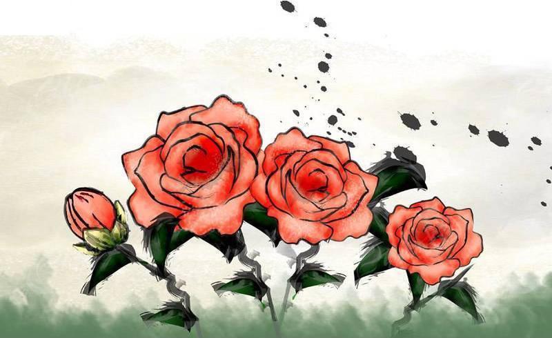 手绘风格的月季花